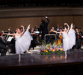 SALUTE TO VIENNA: NEW YEAR'S CONCERT 2014