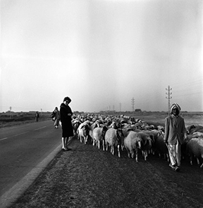 Latif al Ani, Lady in Eastern Desert, 1961. Black-and-white digital print on Hahnemühle Baryta Fine Art paper, 25 x 25 cm. Courtesy the artist, the Arab Image Foundation and Ruya Foundation.