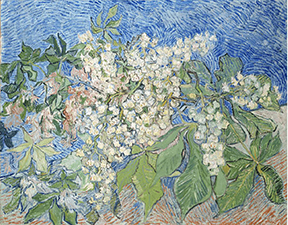 Vincent van Gogh, Blossoming Chestnut Branches, 1890. Oil on canvas, 73 x 92 cm. Foundation E. G. Bührle Collection, Zurich.